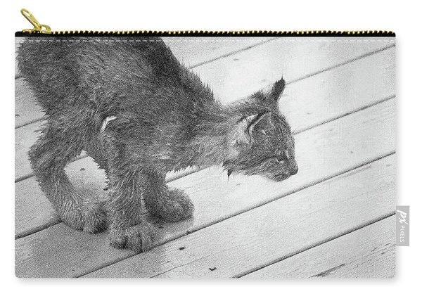 Carry-all Pouch featuring the photograph Crouching Kitty by Tim Newton