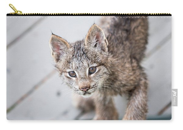 Carry-all Pouch featuring the photograph Does Click Mean Edible by Tim Newton