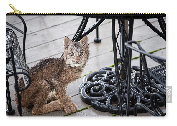 Carry-all Pouch featuring the photograph Are You Looking At Me by Tim Newton