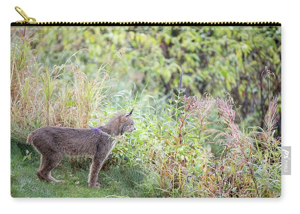 Carry-all Pouch featuring the photograph Ever Vigilant by Tim Newton