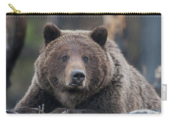 Raw, Rugged And Wild- Grizzly Carry-all Pouch