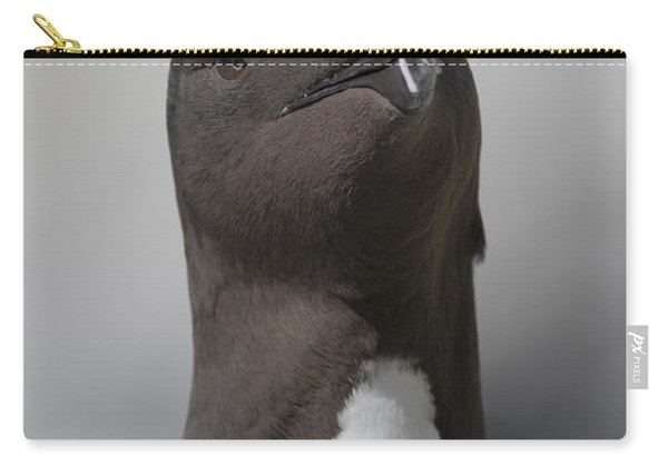 Razorbill Carry-all Pouch