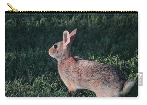 Ready To Run Carry-all Pouch