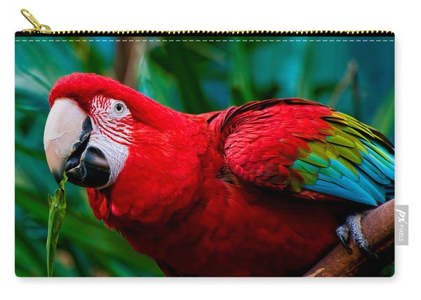 Red And Green Macaw Carry-all Pouch