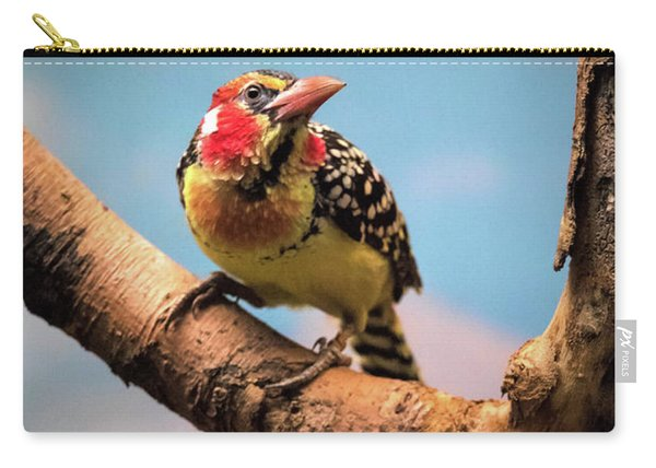 Red And Yellow Barbet Carry-all Pouch