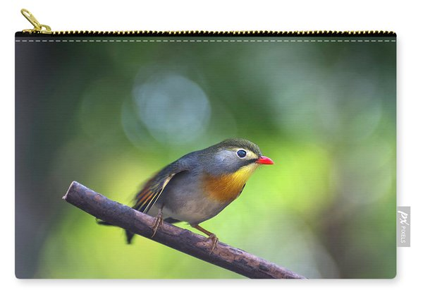 Red Billed Leiothrix Carry-all Pouch