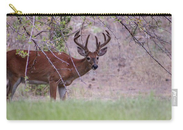 Red Bucks 2 Carry-all Pouch