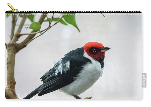 Red Capped Cardinal 2 Carry-all Pouch