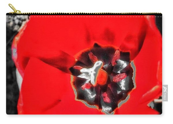 Red  Carry-all Pouch