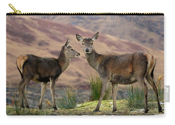 Red Deer Fawns Carry-all Pouch