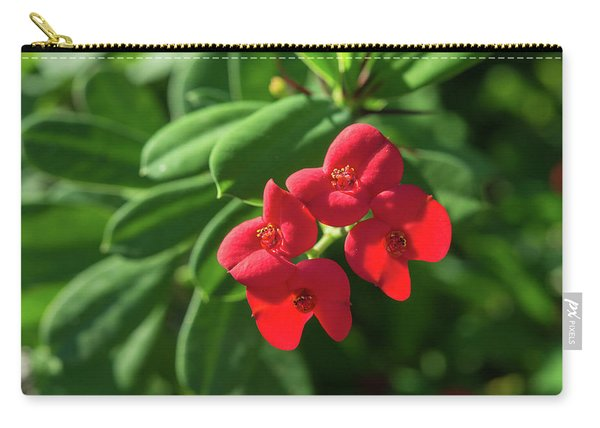 Red Euphorbia Carry-all Pouch