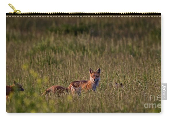 Red Fox Family Carry-all Pouch