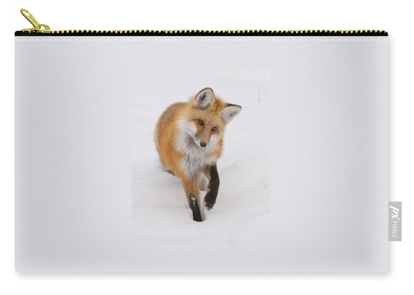 Red Fox Portrait Carry-all Pouch