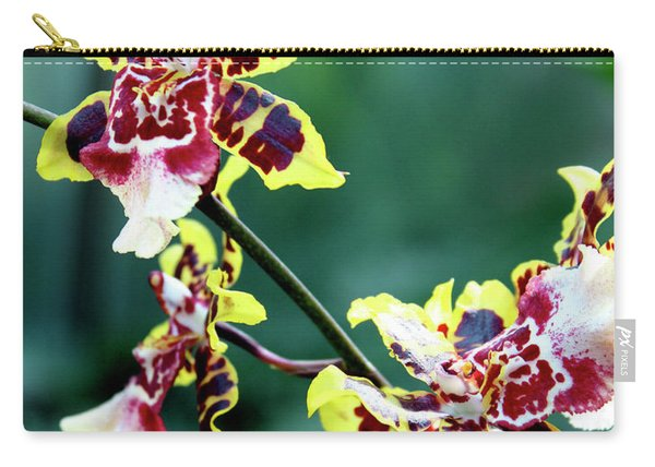 Striped Maroon And Yellow Orchid Carry-all Pouch