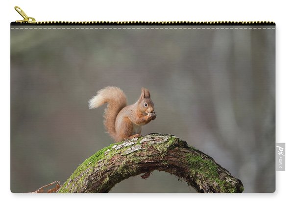 Red Squirrel Eating A Hazelnut Carry-all Pouch