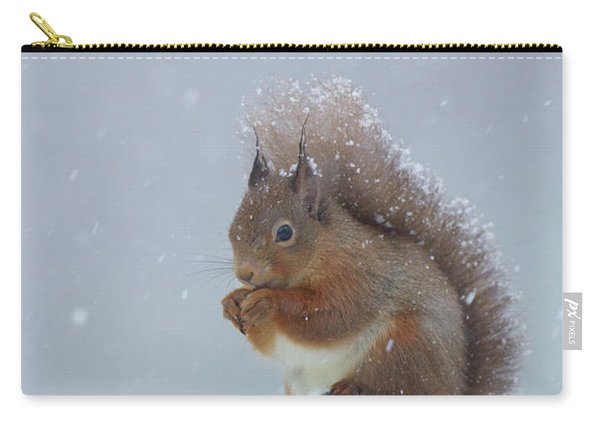 Red Squirrel In A Blizzard Carry-all Pouch