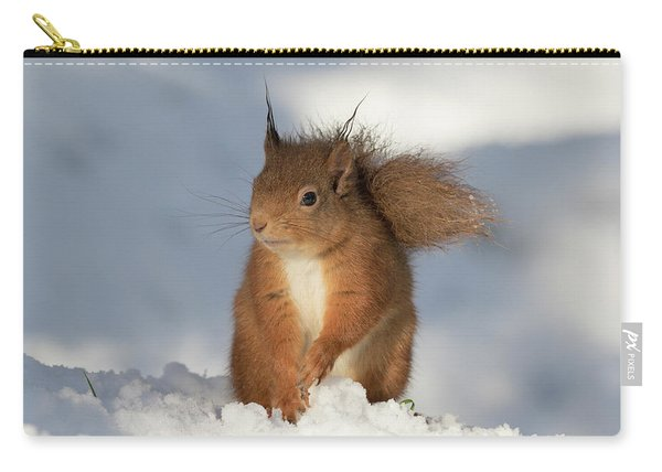 Red Squirrel In The Snow Carry-all Pouch