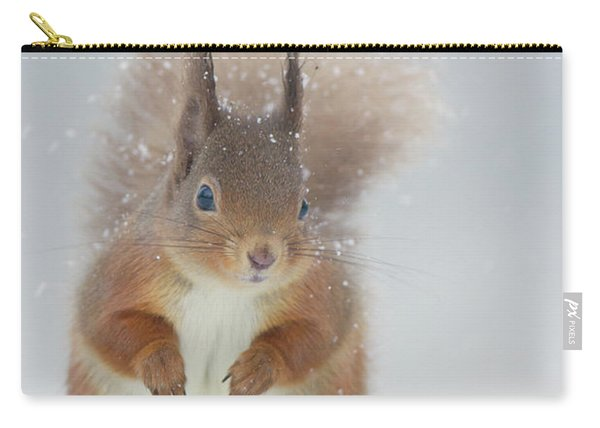Red Squirrel In Winter Carry-all Pouch