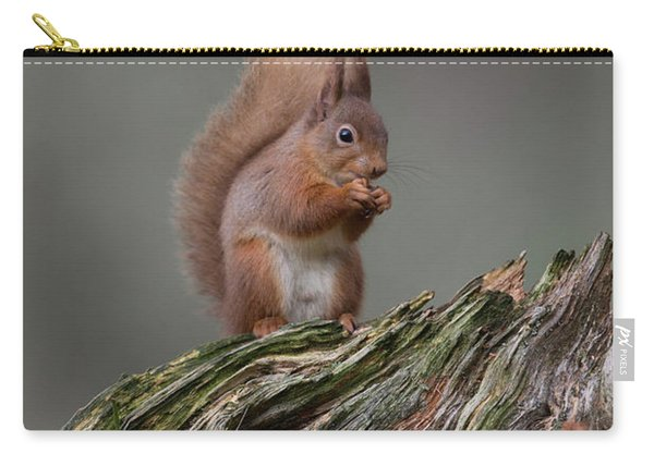Red Squirrel Nibbling A Nut Carry-all Pouch
