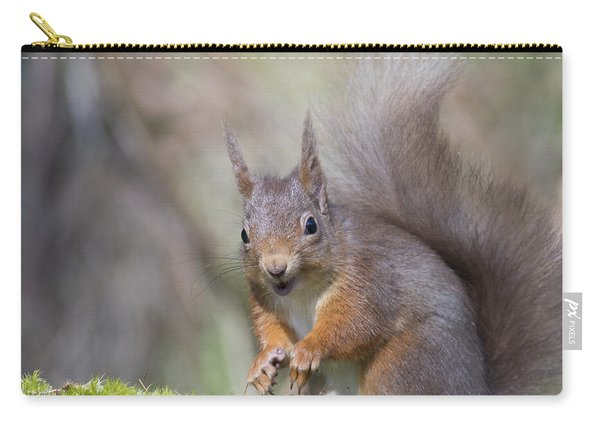 Red Squirrel - Scottish Highlands #26 Carry-all Pouch