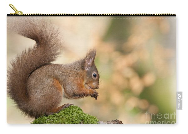 A Moment Of Meditation - Red Squirrel #27 Carry-all Pouch
