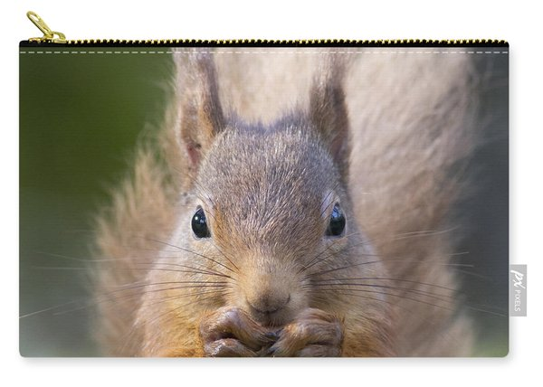 Red Squirrel - Scottish Highlands #28 Carry-all Pouch