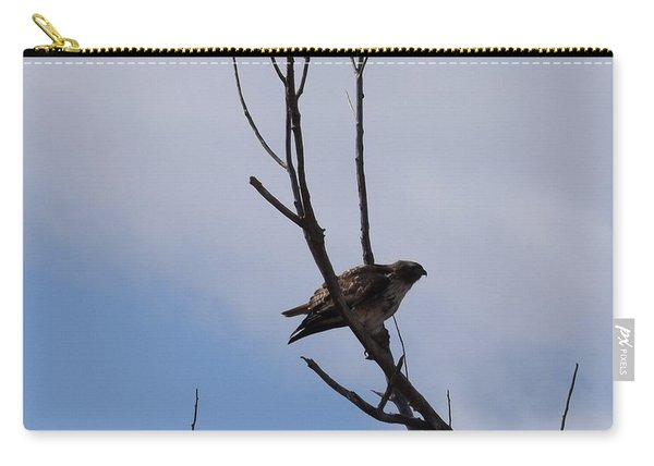 Carry-all Pouch featuring the photograph Red Tail Hawk Male Tower Rd Denver by Margarethe Binkley
