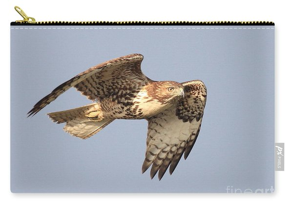 Red Tailed Hawk 20100101-2 Carry-all Pouch