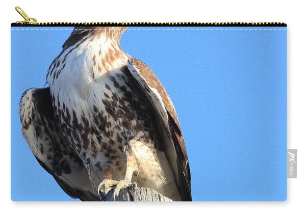Red Tailed Hawk And Moon Carry-all Pouch