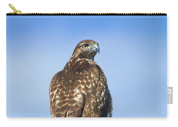 Red-tailed Hawk Perched Looking Back Over Shoulder Carry-all Pouch