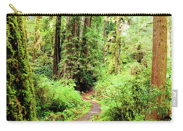 Red Woods Trail Carry-all Pouch