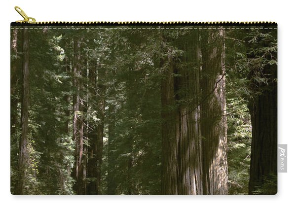 Redwood Highway Carry-all Pouch