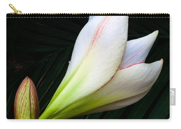 Refined Elegance Carry-all Pouch