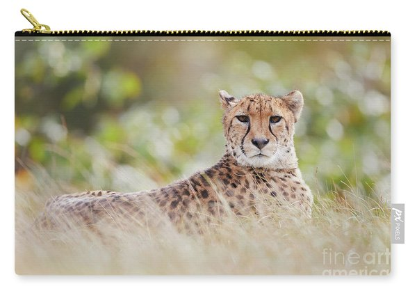 Resting Cheetah Carry-all Pouch