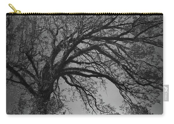 Ridgeway School Doorway Arch In Black And White Carry-all Pouch