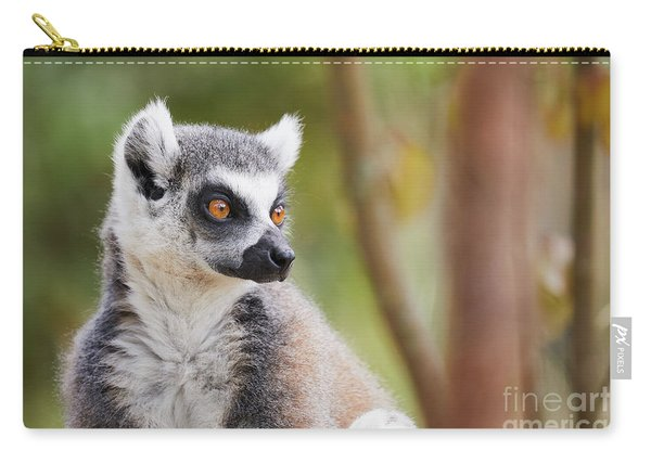 Ring-tailed Lemur Closeup Carry-all Pouch