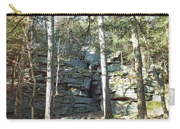 Rock Formation 3 - Ricketts Glen Carry-all Pouch
