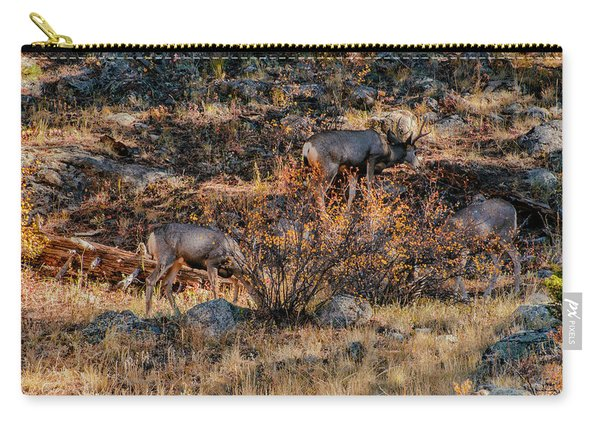 Rocky Mountain National Park Deer Colorado Carry-all Pouch