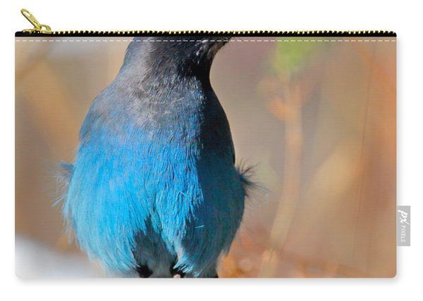 Rocky Mountain Steller's Jay Carry-all Pouch