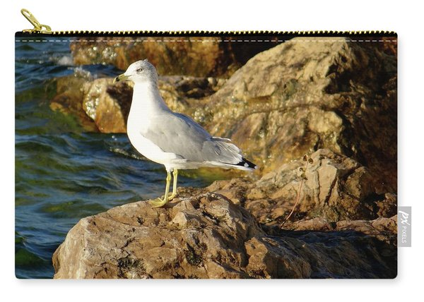 Rocky Waters Carry-all Pouch