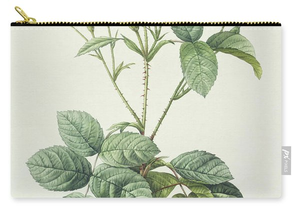 Rosa Centifolia Caryophyllea Carry-all Pouch