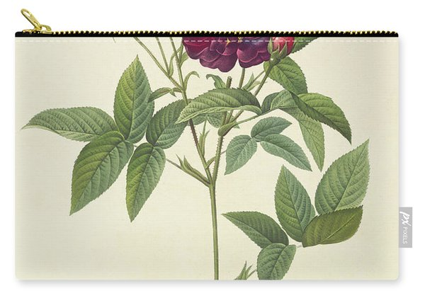 Rosa Gallica Purpurea Velutina Carry-all Pouch