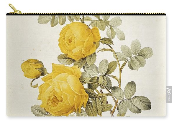 Rosa Sulfurea Carry-all Pouch