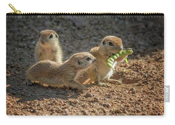 Round-tailed Ground Squirrels 1198 Carry-all Pouch