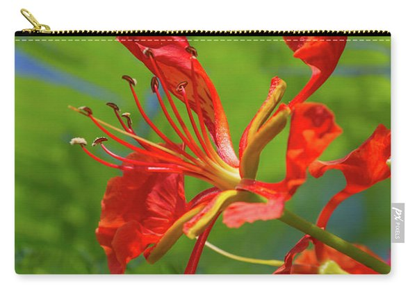 Royal Poinciana Flower Carry-all Pouch