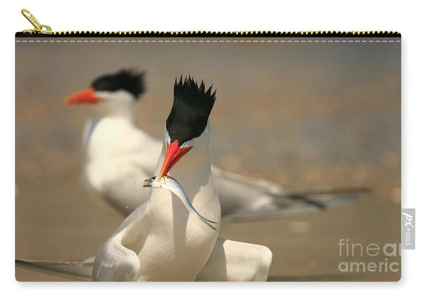 Royal Tern Catch Carry-all Pouch