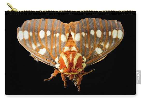 Royal Walnut Moth On Black Carry-all Pouch