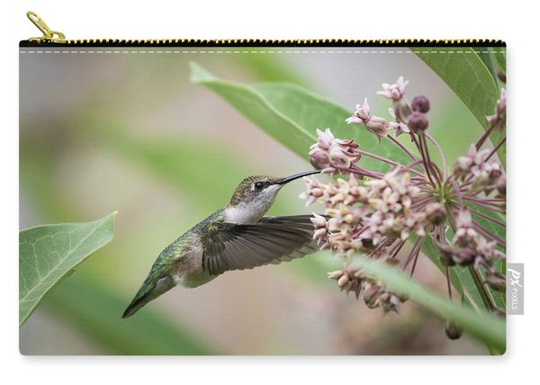 Ruby Throated Hummingbird 2016-1 Carry-all Pouch