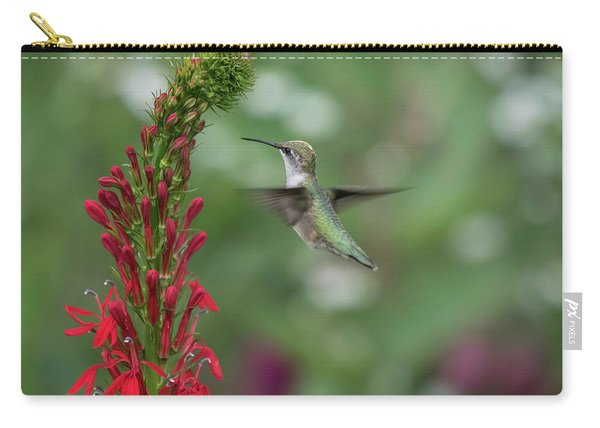 Ruby Throated Hummingbird 2016-4 Carry-all Pouch