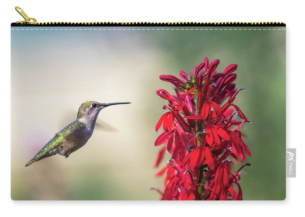 Ruby Throated Hummingbird 2017-2 Carry-all Pouch